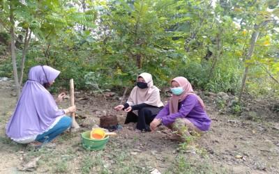 Ciptakan Ketahanan Pangan Selama Covid-19 LPPM dan Prodi D-III Kebidanan Kampus Ungu Bersama Warga Desa Sumberejo Kecamatan Trucuk mafaatkan Pekarangan Rumah
